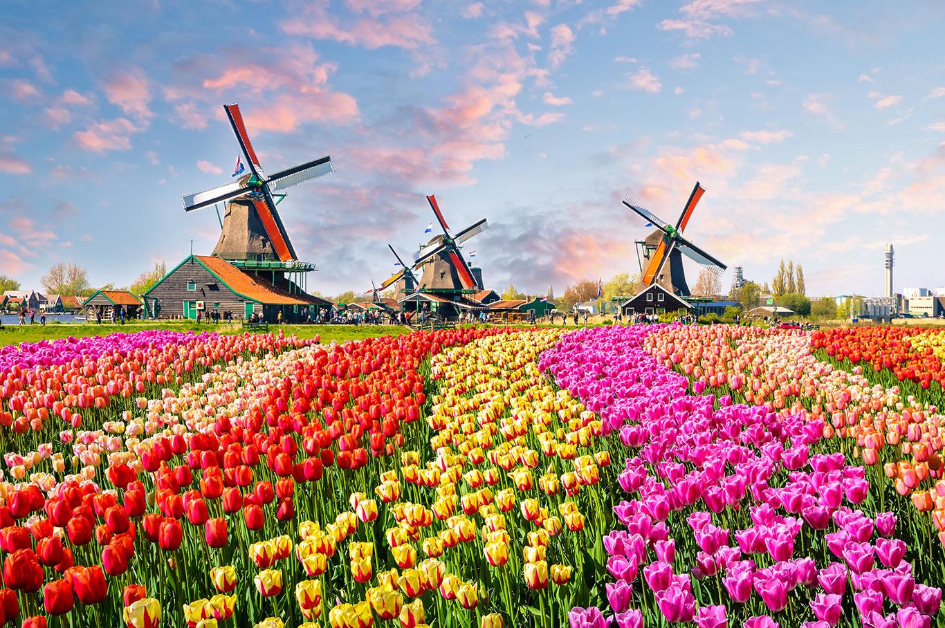 Billigfluege-Niederlande